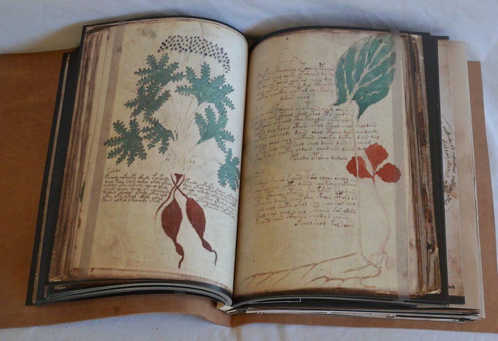 Рукописи Войнича